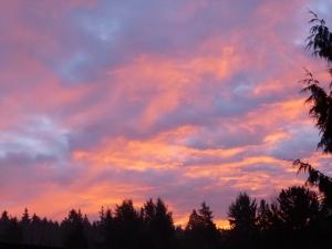 Last Sunrise of 2012 © Rebecca Rockefeller