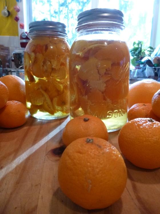 Orange Peel Vinegar Cleaner in the Making