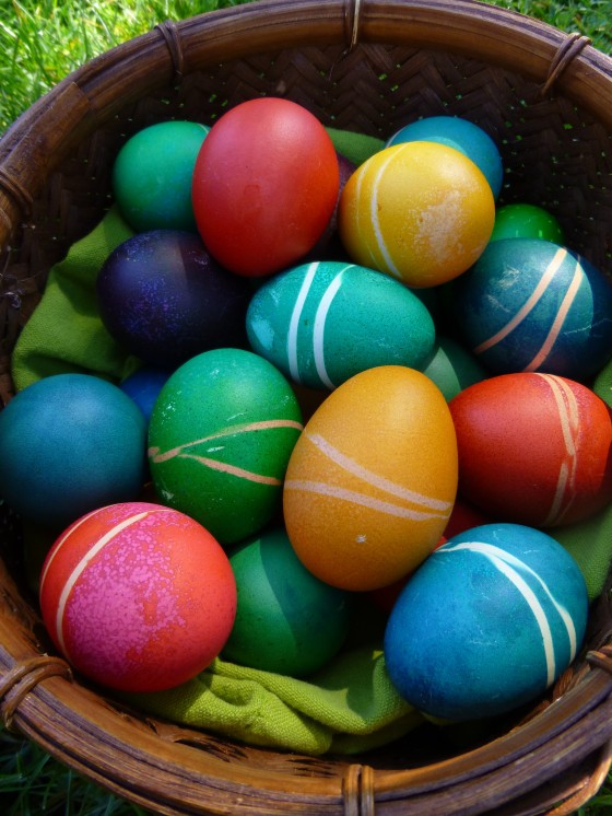 Brown Eggs, Dyed