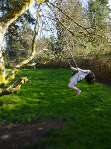 summer swing in spring © Rebecca Rockefeller