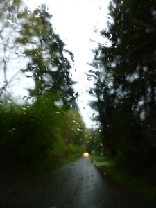 raindrops on windshield, Rose Loop © Rebecca Rockefeller