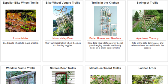 Click Through For Trash Backwards' Trellis Ideas