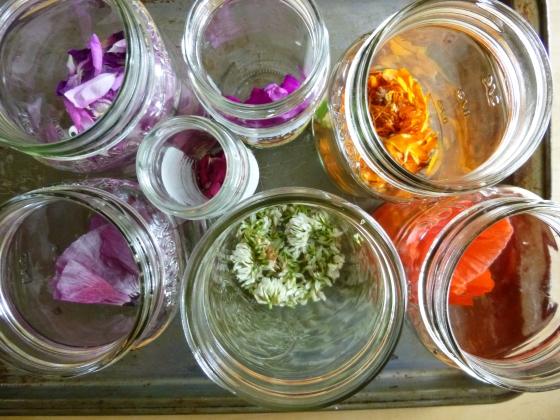 Petals for DIY Ink