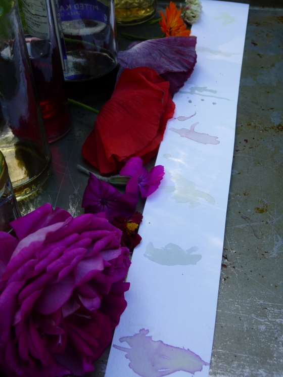 Testing the Colors of Our DIY Flower Petal Ink