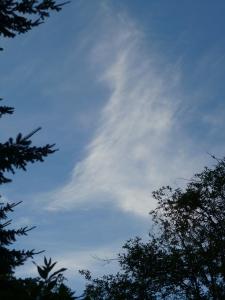 9 pm sky photo © Rebecca Rockefeller