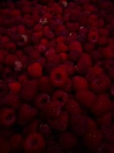 raspberries picked at dusk photo © Rebecca Rockefeller